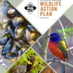 State Wildlife Action Plan receives federal approval