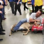 Unsuspecting Walmart customer takes down startled deer